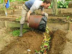 food scrap bury