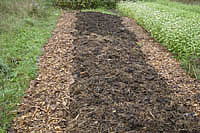 sheet mulch